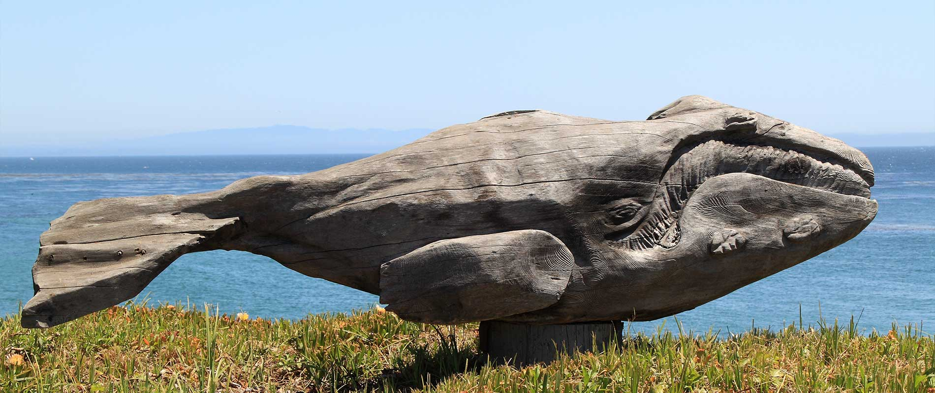 Save the beached whales! (Or, Your job isn't done when the speech is)